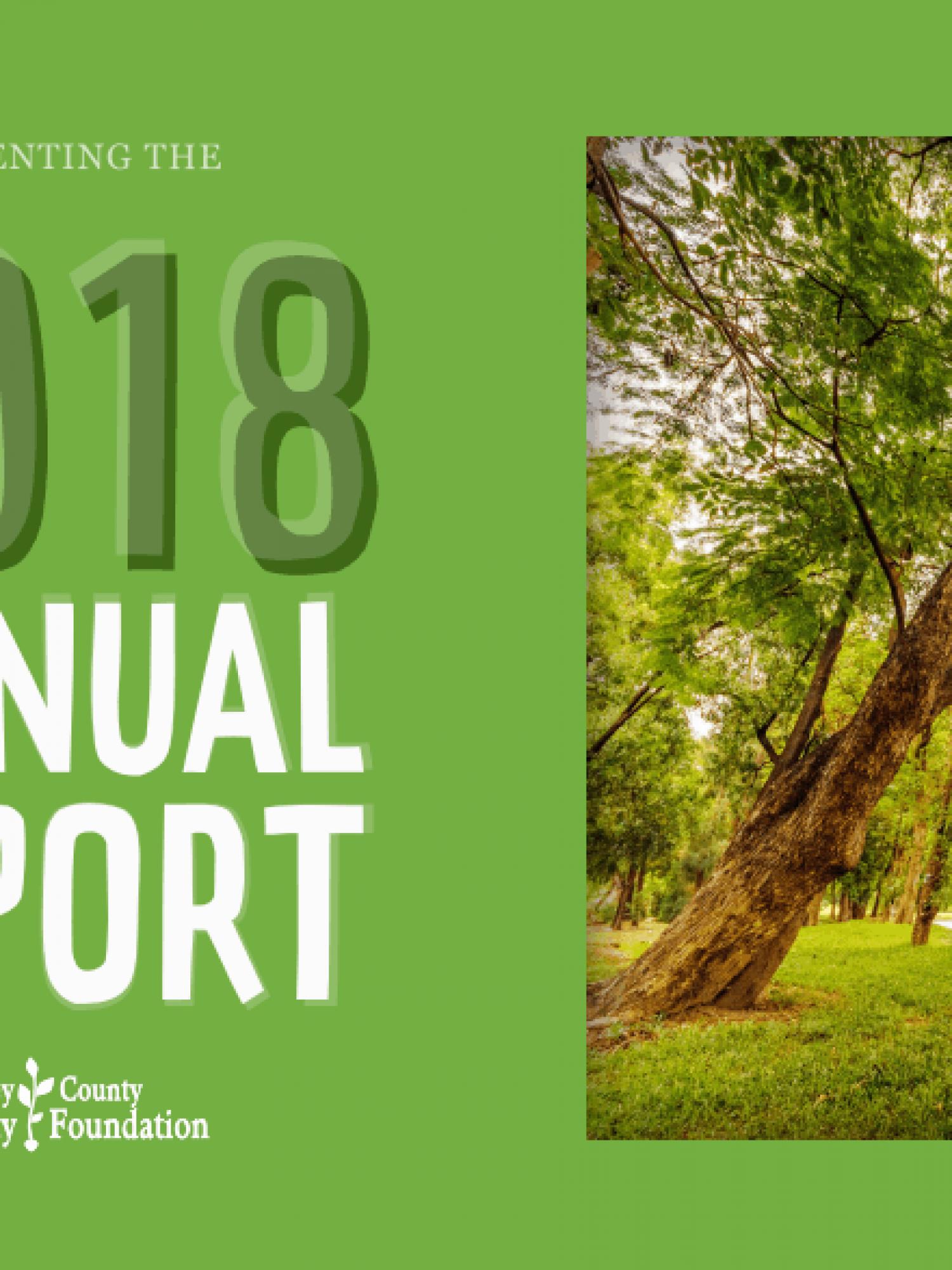 2018-annual-report