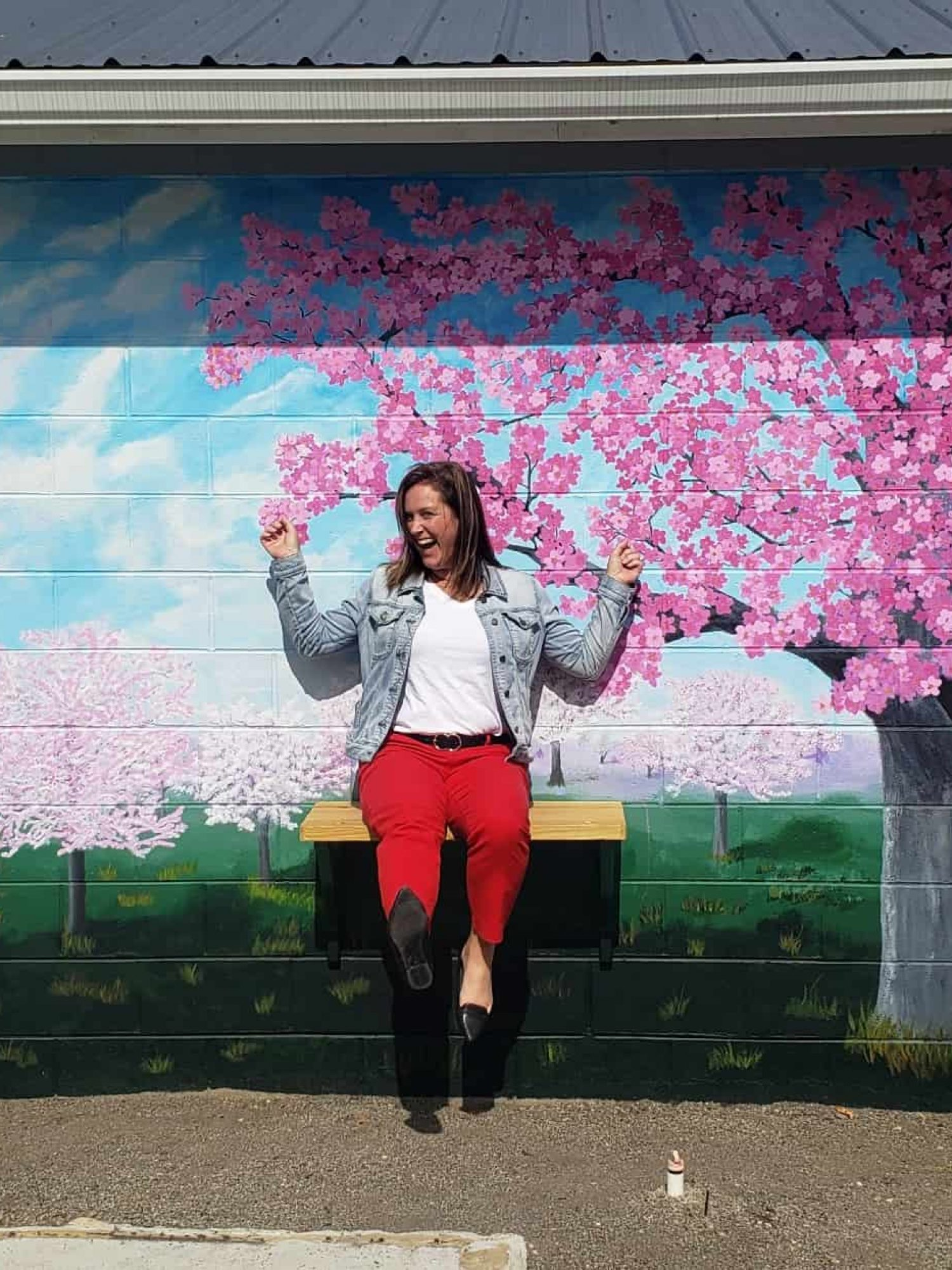 My-Community-My-Vision-Mural-Amy-Streator-on-Swing